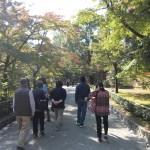 2013年京都紅葉